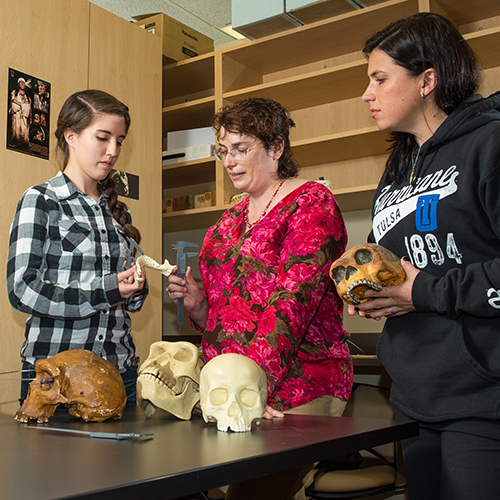 Anthropology students studying and comparing skulls in the classroom.