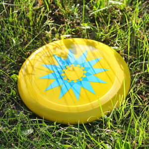 close up view of a yellow and blue frisbee on the grass