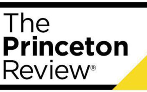 princeton review survey