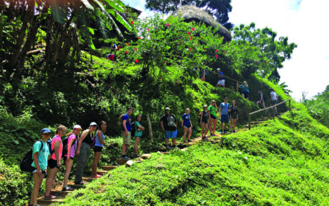 students lined up on a path in a green tropical landscape